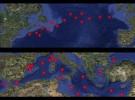 POLMAP - Map